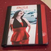 Subli Leather Hardcover für iPad 2,3 und 4